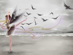 refoot , beach , bird , c…