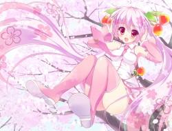 ameto yuki, cherry blosso…