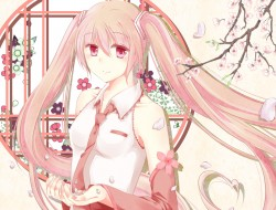 cherry blossoms, hatsune …