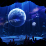 animal, bubbles, fish, mo…