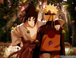 Uchiha Sasuke, Naruto Shi…