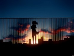 sunset, silhouettes, anim…