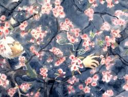 flowers, ginko mushishi, …