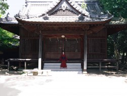 barefoot, erhu, japanese …
