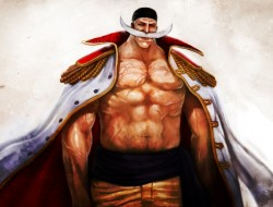 male , one_piece , pirate…