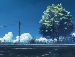 grass , hatsuame , origin…