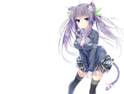 animal_ears catgirl gray_…